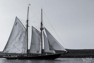 Bluenose II
